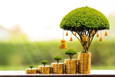 kapitalbildende Lebensversicherung Baum als Symbol